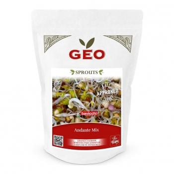 Mix Andante - Graines à germer bio - 400g - Geo