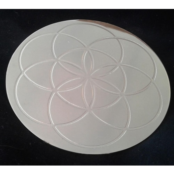 Graine de vie rond à tout faire en laiton nickelé D.10.5 cm