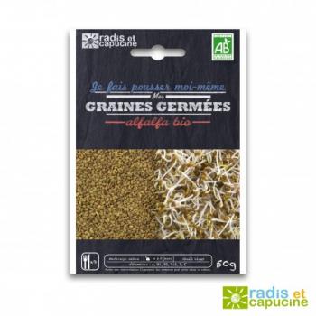graines-a-germer-alfalfa-bio