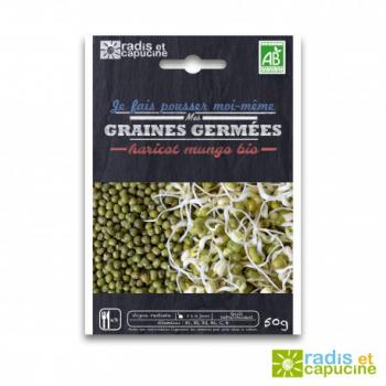 graines-a-germer-haricot-mungo-bio-50gr-diy