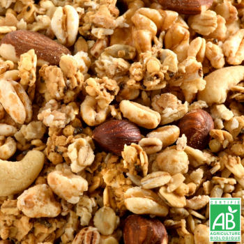 JUSTEBIO - Granola Fruits à Coque - Lot de 2 sachets de 2kg