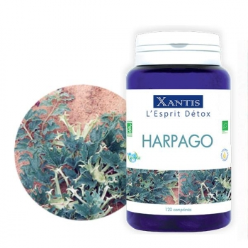 Harpago Bio 120 comprimés / 30 jours