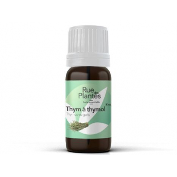 Huile-essentielle-de-thym-a-thymol