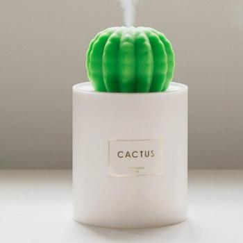 Humidificateur Cactus