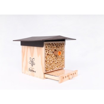 BeeHome Observer Chocolat