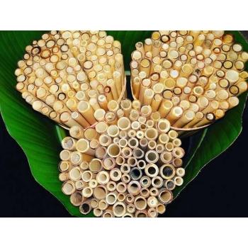 Pailles en bambou zéro déchet pour smoothies