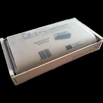 Kit Domus+ Micro-pousses fraîches toute l'année