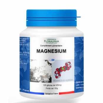 120-gelules-de-magnesium-1