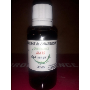 Macérât BIO de bourgeons : Maïs 10 ml  DROMESSENCE