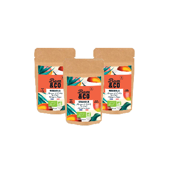 Granola Mangue et Eclats de Coco Nomade