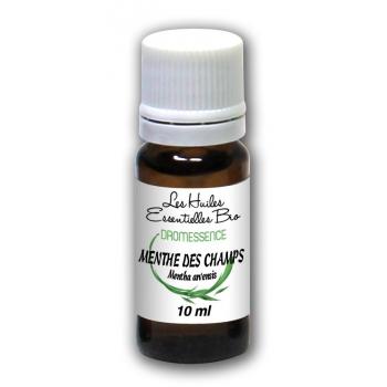 Huile essentielle Menthe des champs 10 ml