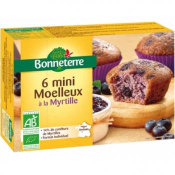 mini-moelleux-myrtille-bonneterre