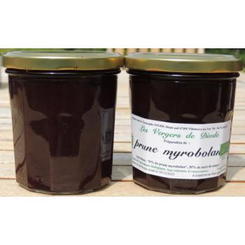 préparation de prune myrobolan