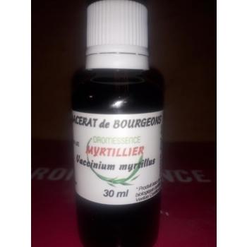 Macérât BIO de bourgeons : Myrtillier 10 ml DROMESSENCE
