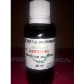 Macérât BIO de bourgeons : Myrtillier 30 ml DROMESSENCE