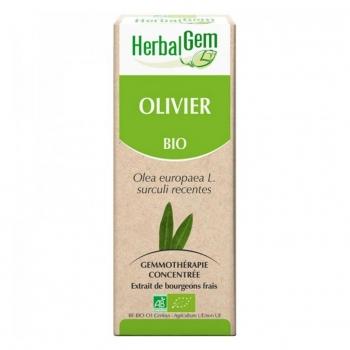 Macréat d'Olivier Bio - 50ml