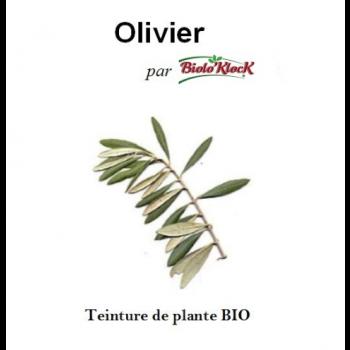 Extrait d'Olivier - 50ml