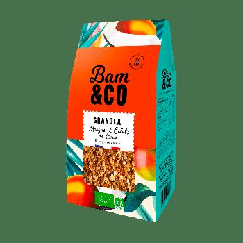 Granola Mangue et Eclats de Coco