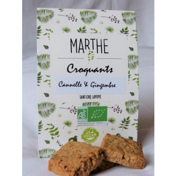 Biscuits Bio Vegan Cannelle Gingembre 100g