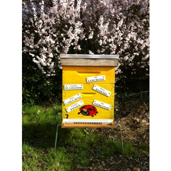 Parrainage citoyen de ruche de 12000 Abeilles