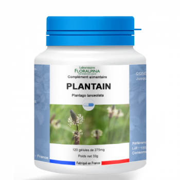 Plantain-120-gelules