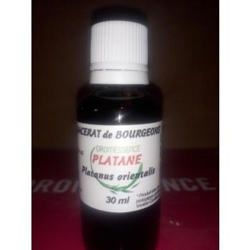 Macérât BIO de bourgeons : Platane 10 ml DROMESSENCE