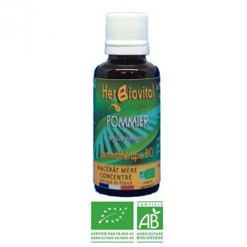 Pommier-Gemmotherapie-Bio-Herbiovital-Boufféesdechaleur
