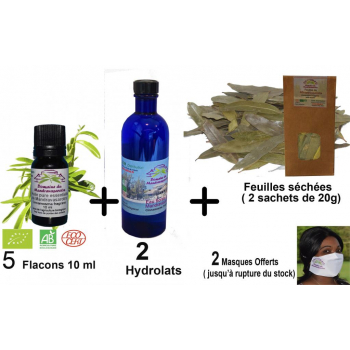 Mandravasarotra ( saro) Offre globale 2 : 5 flacons 10 ml Huile essentielle + 2 flacons d'Hydrolat 200 ml + 2 sachet de feuilles  ( 20 g).