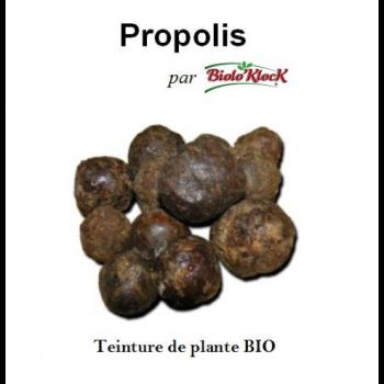 Extrait de Propolis - 100 ml