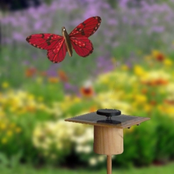 Kit Papillon solaire