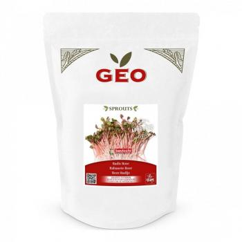 Radis Rose - Graines à germer bio - 500g - Geo