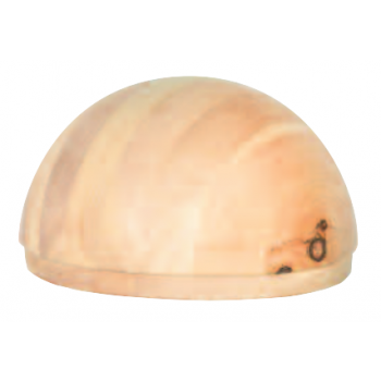RayGuard Dome pin suisse