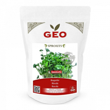 Roquette - Graines à germer bio - 300g - Geo