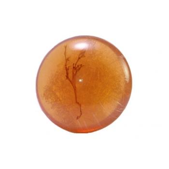 savon lentille à l'huile d'argan de 200g