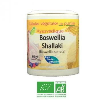 Shallaki-Ayurveda-Herbiovital-Articulations
