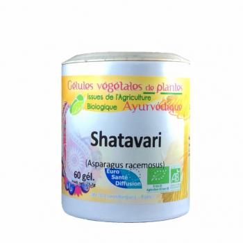 Shatavari-Ayurveda-Bio-Confortfeminin