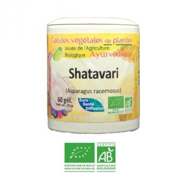 Shatavari-Ayurveda-Bio-Herbiovital-Confortfeminin