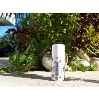 Stick à lèvres à l'huile de Prune BIO du Lot & Garonne - Tube cartonné 10 g