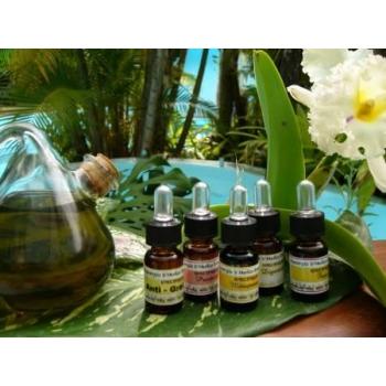 synergie huiles essentielles à ingérer menopause