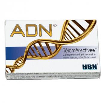 ADN Téloméractives
