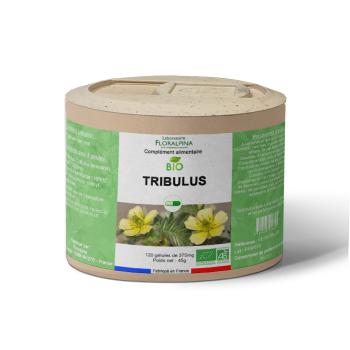 Tribulus-bio-120-gelules