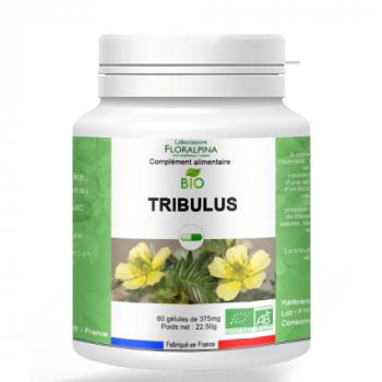 Tribulus-bio-60-gelules