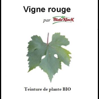 Extrait de Vigne rouge - 50ml