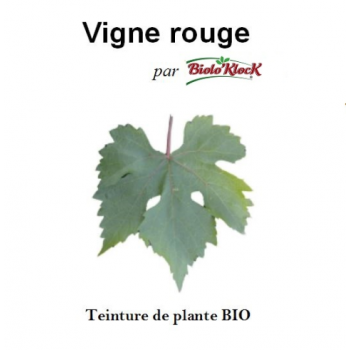 Extrait de Vigne rouge - 100ml