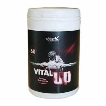 Vital'Up 120 gélules