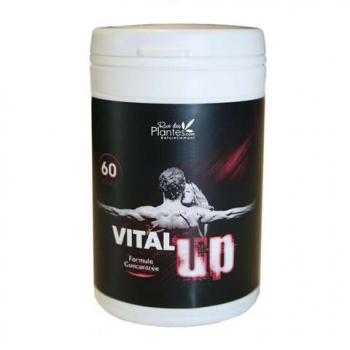 vital-up-60-gelules-1-1