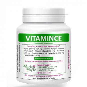 VitaMince-100-gelules-GE-MP014-100