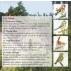 Chants d'oiseaux dans la campagne