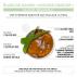 BOMOI - Elixir de Savon façon mousse fraîche 150ml