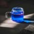 Phycocyanine - Extrait Liquide de Spiruline - 1,5 g/l - 500 ml